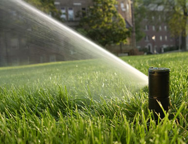 Lawn Sprinklers - Installtion, Service And Maintenance