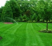Winterize Your Long Island Lawn
