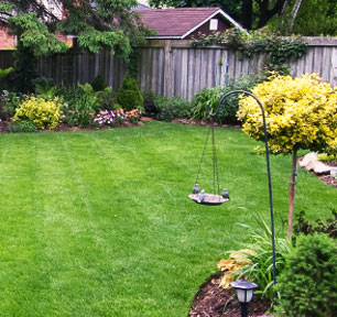 Lawn Care Services - Long Island