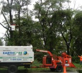 Long Island Tree Services - Alternative Earthcare