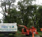 Long Island Tree Services - Alternative Earthcare