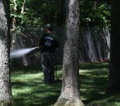 Lawn Spraying for Ticks