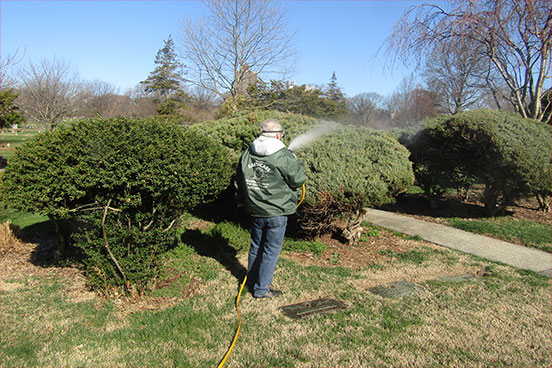 Long Island Lawn Care