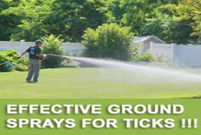 Tick Spraying In Stony Brook Tick Spraying Stony Brook