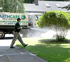 Tick Controle Greenlawn | Tick Spraying in Greenlawn | Tick